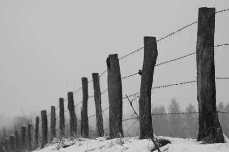 """""""Fence and barbed wire"""" de Alexandre Dulaunoy"""